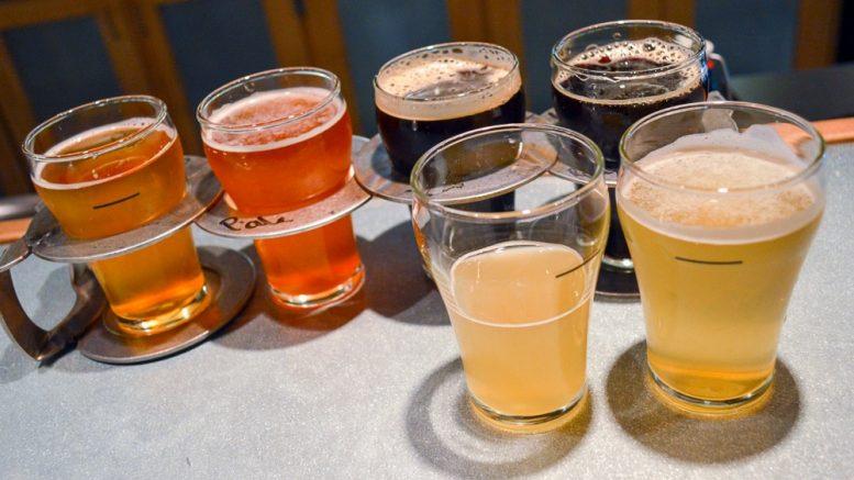 Pilot Batch Wednesday at Aardwolf Brewing Company